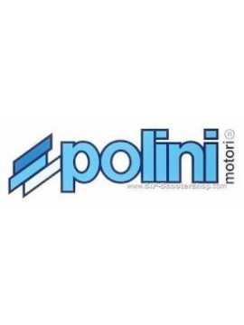 INGRANAGGI PRIMARIO POLINI HONDA/PEUGEOT